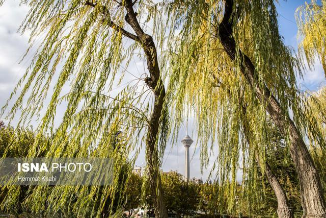 سرانجام نخستین جشنواره ملی چارسوق در برج میلاد