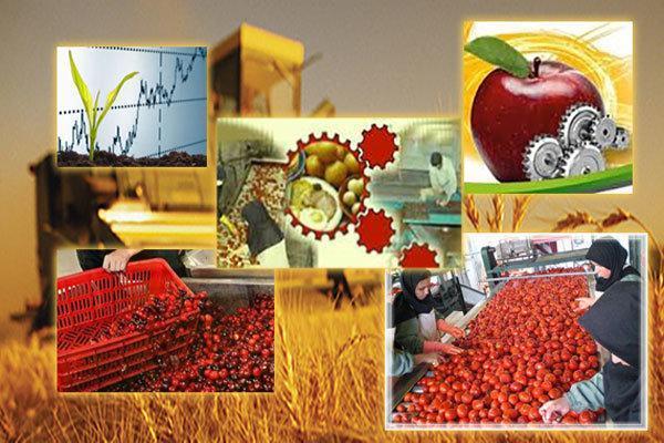 راه اندازی و توسعه 12 واحد تولیدی صنایع غذایی در خراسان رضوی
