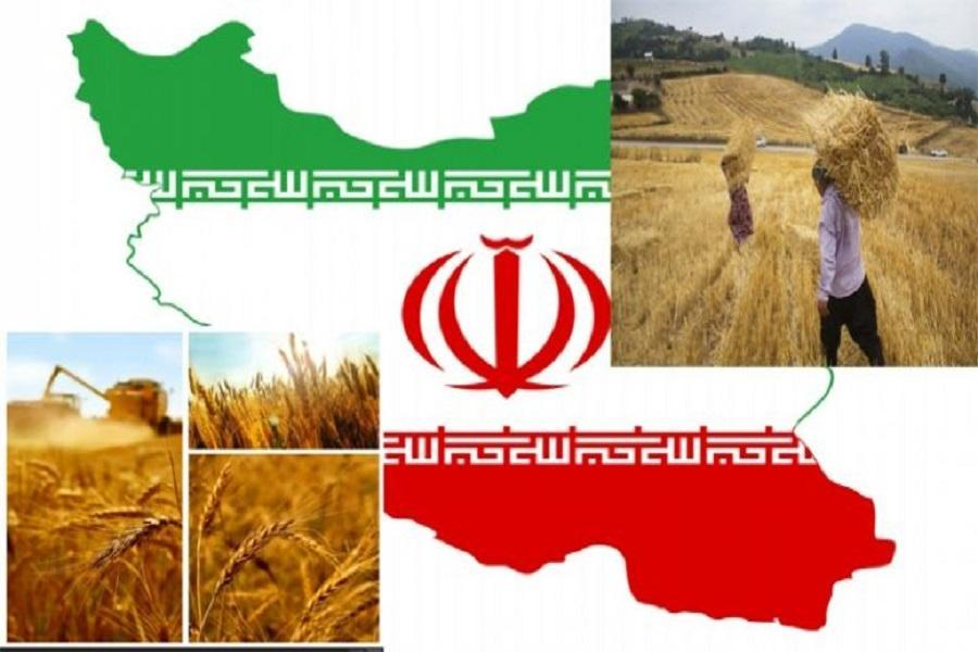 رسانه چینی:خودکفایی رمز پیروزی ایران بر تحریم ها است