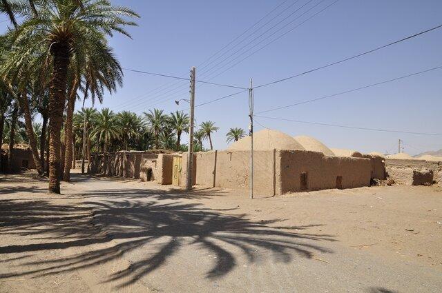 زیرسایه نخلستان 200 ساله در بیابان لوت